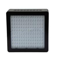 Advanced Bloom LED Light 400 W